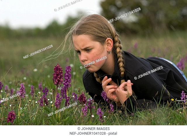 Girl lying on front and observing early-purple orchid