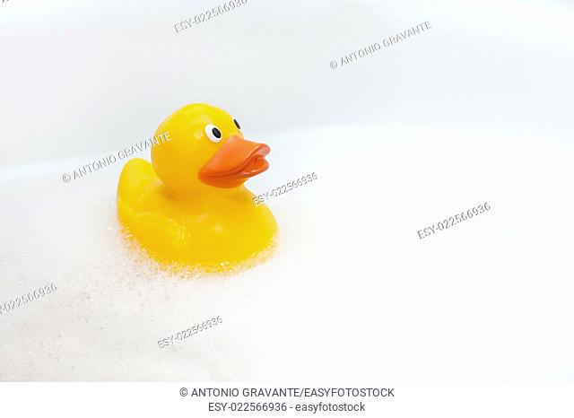 Cute rubber duck floating in suds isolated with copy space