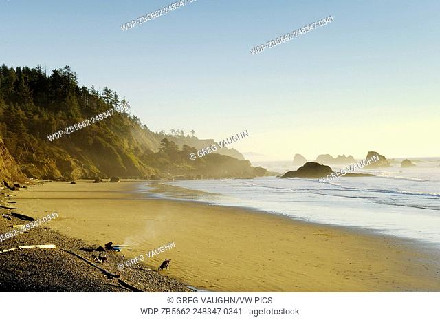 People on beach with surfboard, kayak and jogging stroller; Indian Beach at Ecola State Park on the northern Oregon coast