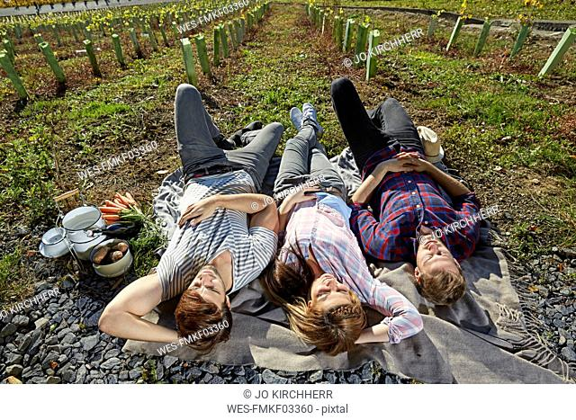 Friends lying in the countryside