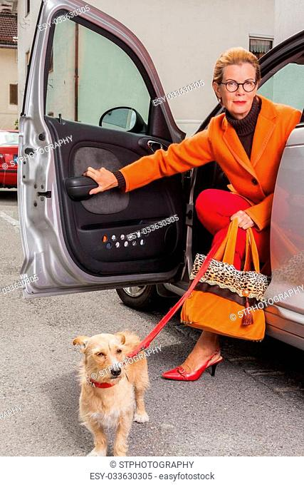 Stylish mature woman wearing glasses and a glamorous orange outfit with her little dog on a lead alighting from the open door of her car