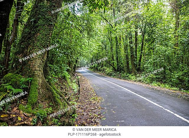 Winding road through tropical rain forest on the slopes of Mount Rinjani, active volcano on the island Lombok, Indonesia