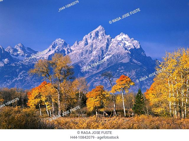 USA, America, United States, North America, Wyoming, Grand Teton, national park, October 2007, North America, Landscap