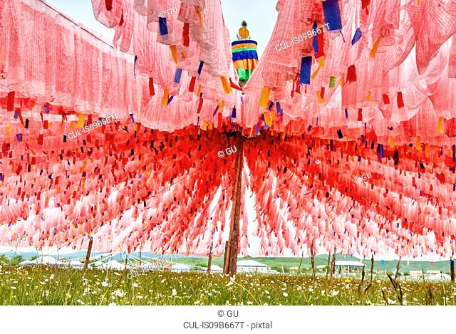 Rows of pink prayer flags at Waqietalin temple, Sichuan, China