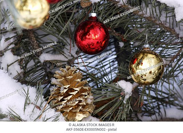 Close up of Christmas ornaments w/pine cone in snow covered tree Mat-Su Valley Southcentral Alaska