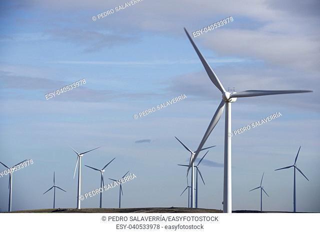 windmills for renewable electric energy production