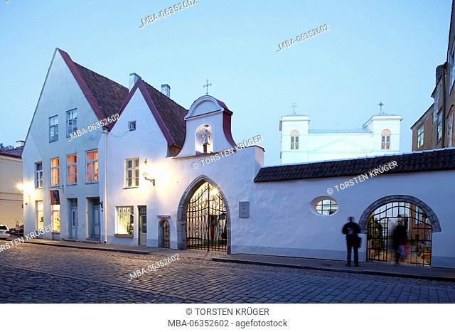 St Peter and St Paul's Cathedral, Tallinn, Estonia, Europe