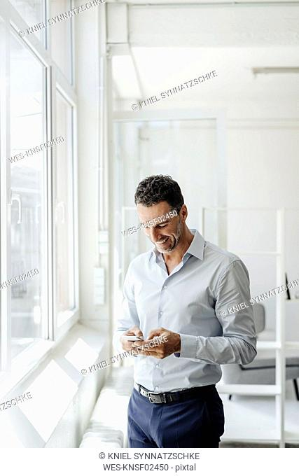 Smiling businessman in office at the window looking at cell phone