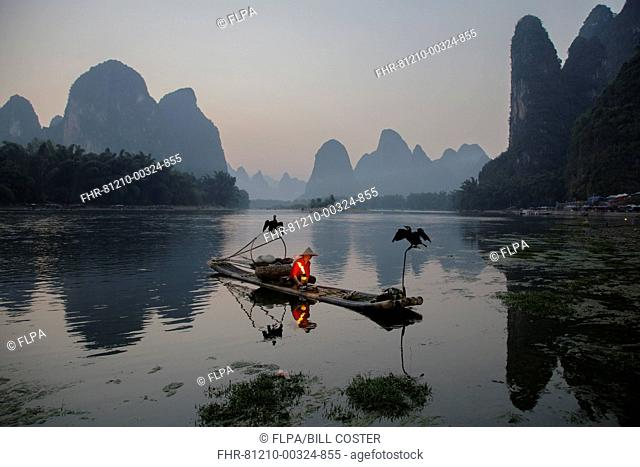 Traditional fisherman with trained cormorants, lighting lamp on bamboo raft at sunrise, on river in karst area, Li River, Guilin