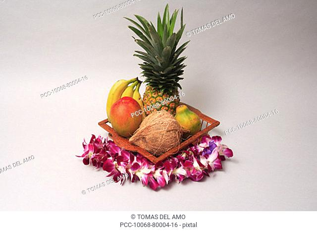 Variety of exotic tropical fruits in a basket with orchid lei on a white background