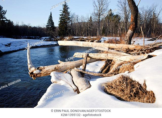 River erosion along the Swift River in the White Mountains, New Hampshire USA