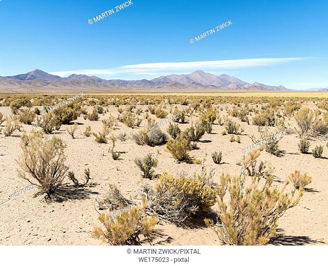 Landscape near the salt flats Salinas Grandes in the Altiplano. South America, Argentina
