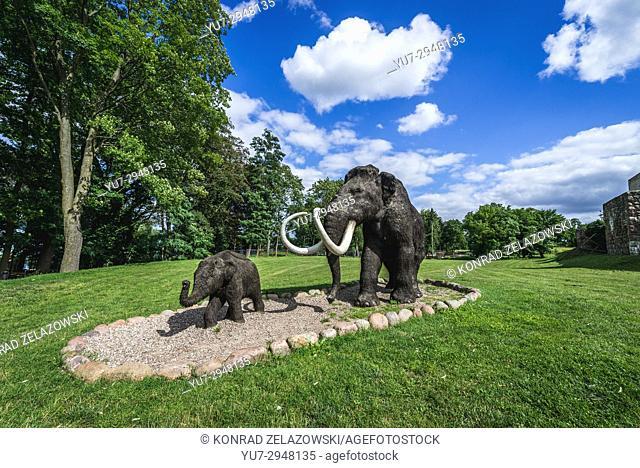 "Model of extinct specie Mammuthus primigenius - Woolly mammoth in geopark called """"Avenue of Pleistocene Stars"""" in Moryn town in Gryfino County"