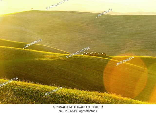 Europe, Italy, Tuscany, Val d'Orcia, September 2013, UNESCO World Heritage - cultural site