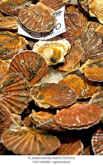 Fish Market, Rialto, Venice, Veneto, Italy