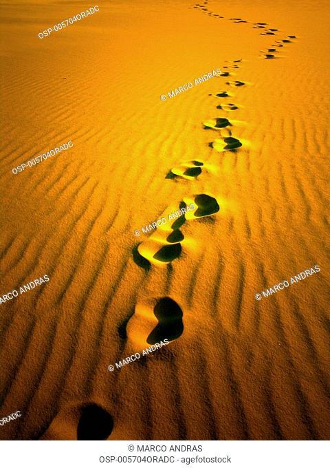 a view of some traces at sao luis do maranhao sands