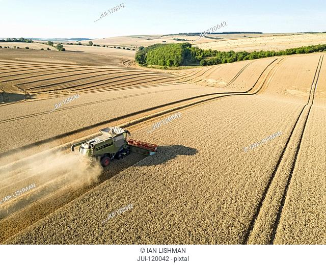 Harvest aerial landscape of combine harvester and summer wheat field farm crop