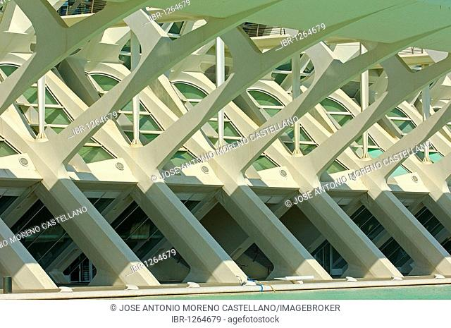 Príncipe Felipe Museum of Sciences, City of Arts and Sciences by S. Calatrava, Valencia, Comunidad Valenciana, Spain, Europe