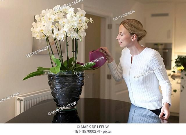 Woman watering orchid