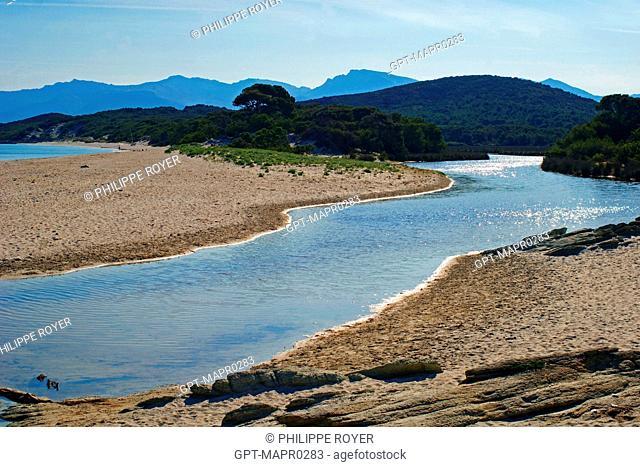 PADULELLA MARSHES, SALECCIA POND, DESERT DES AGRIATES, NORTHERN CORSICA 2B, CORSICA, FRANCE