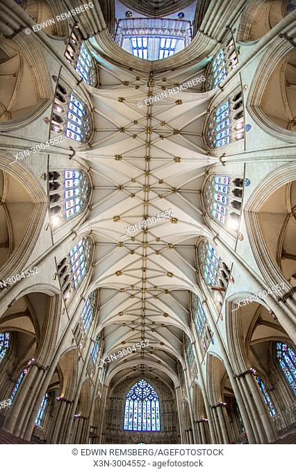 Ceiling of nave in York Minster from directly below, York, Yorkshire, United Kingdom