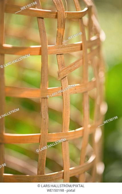 Garden summer scene with empty trellis in close up