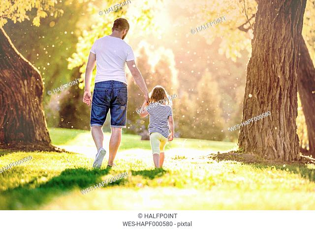 Back view of father and his little daughter walking hand in hand on a meadow in the park
