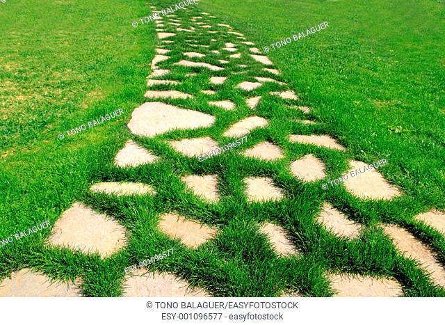 stone path in green grass garden texture vanishing perspective