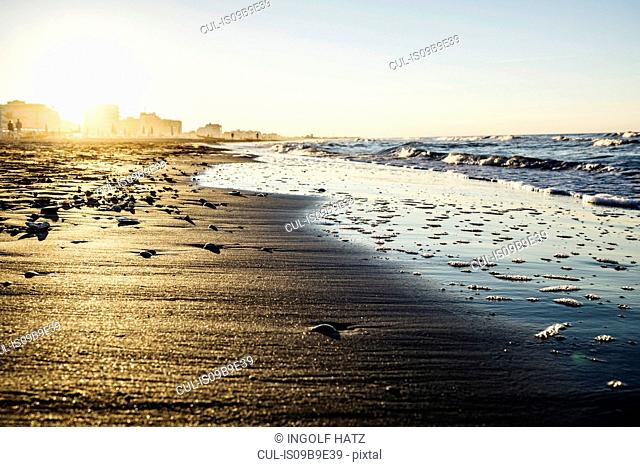 View of water's edge on beach at sunset, Riccione, Emilia-Romagna, Italy
