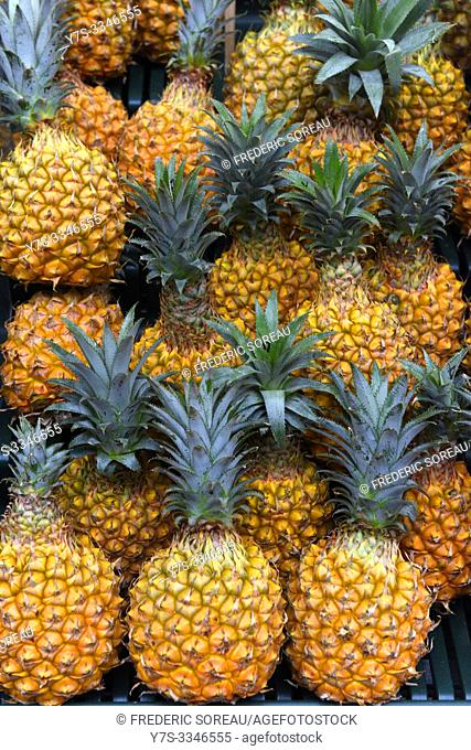 Pineapples for sale, Yaryama islands, Ishigaki-jima, Japan, Asia