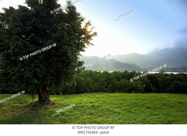 Majestic Scenery