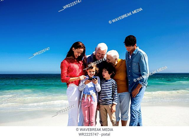 Cute family looking at smartphone