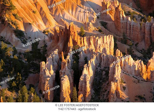 USA, Utah, dawn light on landscape at Bryce Point in Bryce Canyon National Park