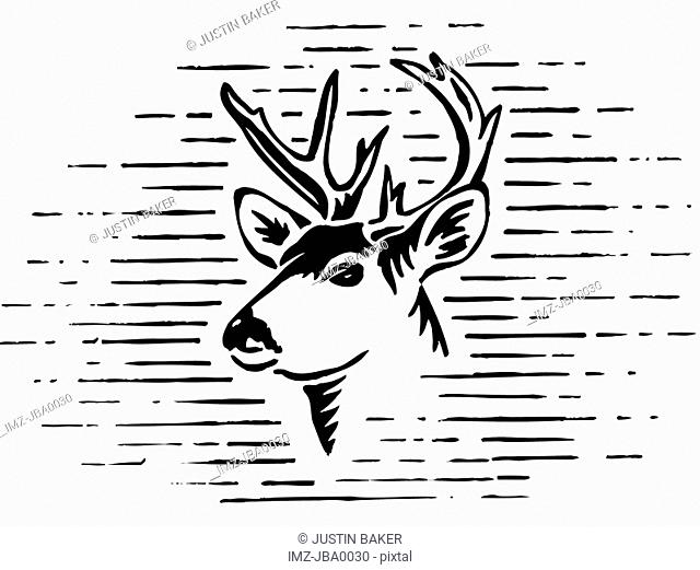 A black and white illustration of a reindeer