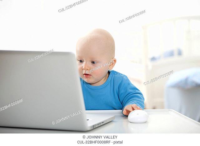Baby boy using laptop