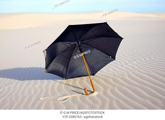 black rain umbrella on sand dunes, NSW coast, Australia