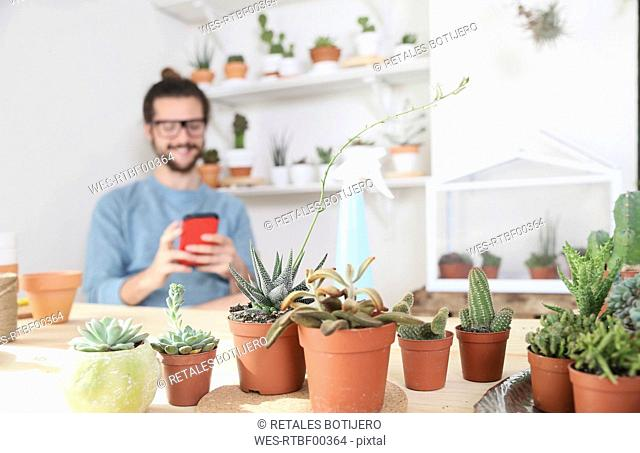 Young man with cell phone behind collection of cacti