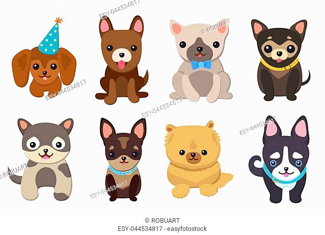 Dogs and puppies collection, poster with pets, of different breeds, pug and basset hound, labrador and chihuahua, dachshund dog on vector illustration