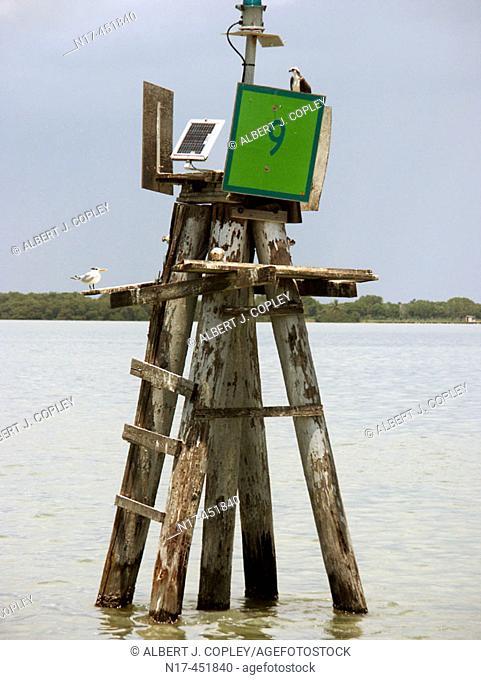 Florida Everglades, solar array