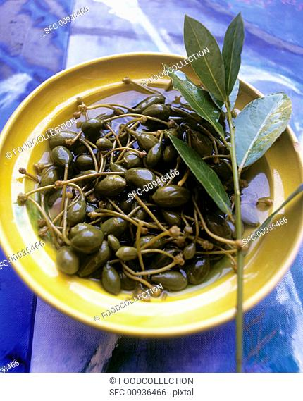 Pickled capers with sprig of bay
