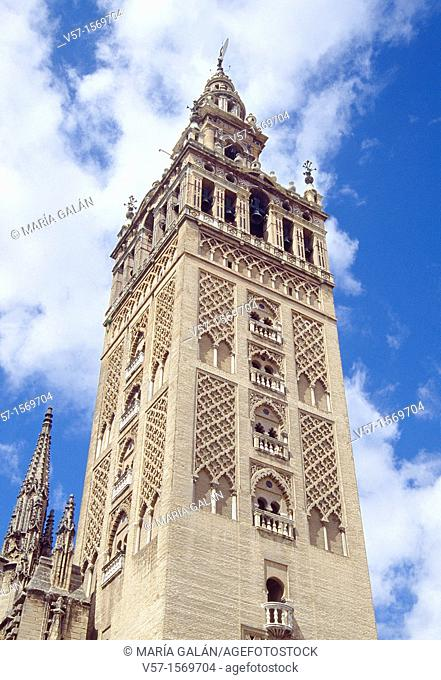 La Giralda tower, view from below. Sevilla, Andalucia, Spain