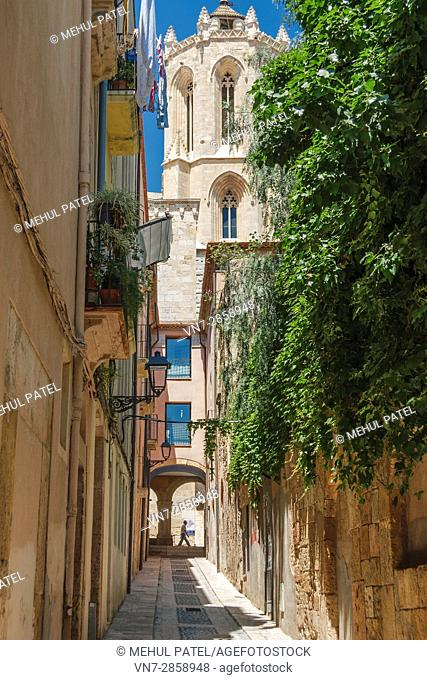 Santa Tecla street leading to the side of the cathedral in Tarragona, Catalonia, Spain. Santa Tecla is the patron Saint of Tarragona and the 'fiestas' which...