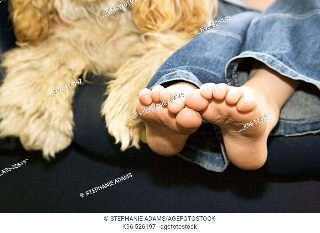 Dog and child's feet