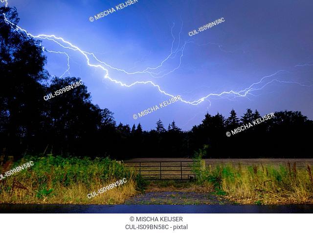 Thunderstorm at night over Mastbos woods, Breda, Noord-Brabant, Netherlands