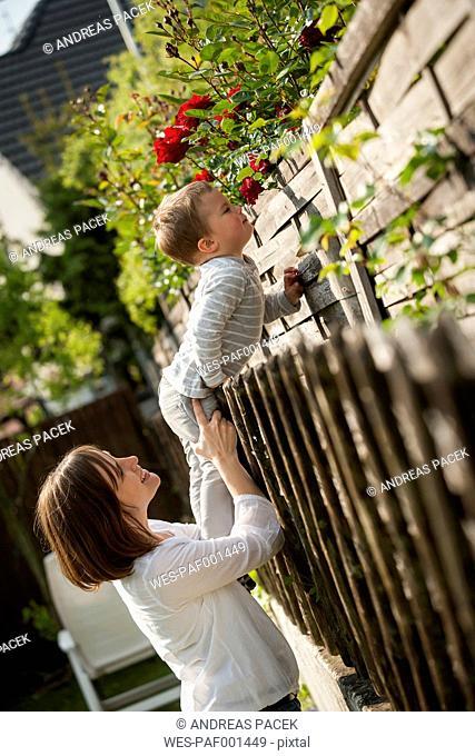 Little boy smelling flowers