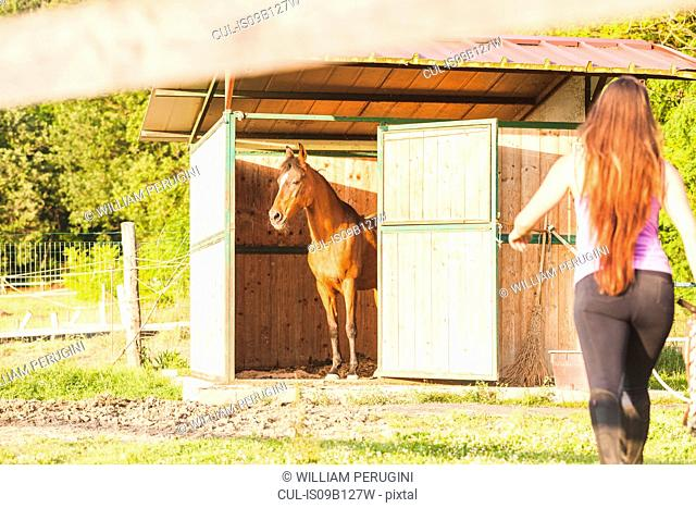Woman approaching horse in stable