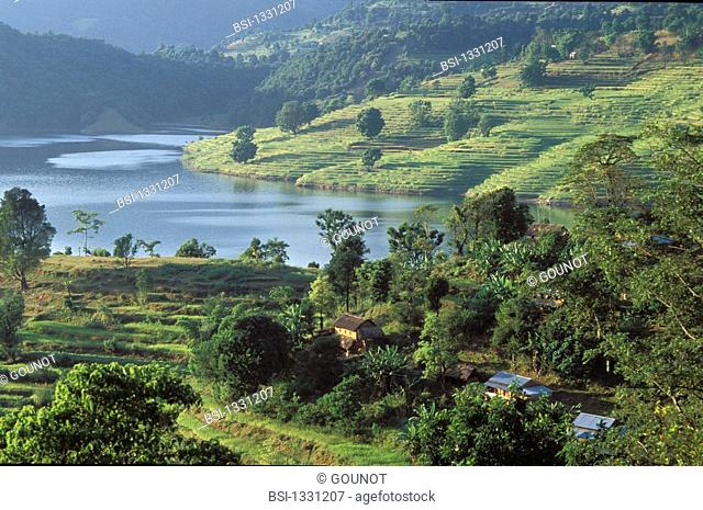Begnas lake in the region of Pokhara in Nepal. On this picture, we can observe cultures of rice paddy in terrace