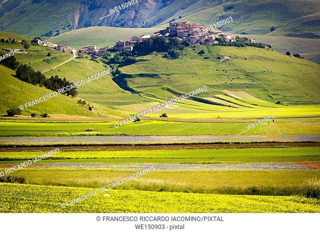 Piana Piccola, Castelluccio di Norcia, Umbria, Italy. valley landscape