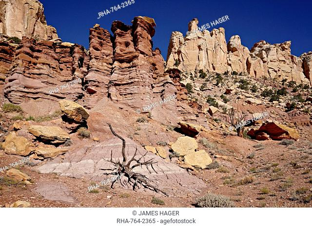 Rock formations and dead juniper, Grand Staircase-Escalante National Monument, Utah, United States of America, North America
