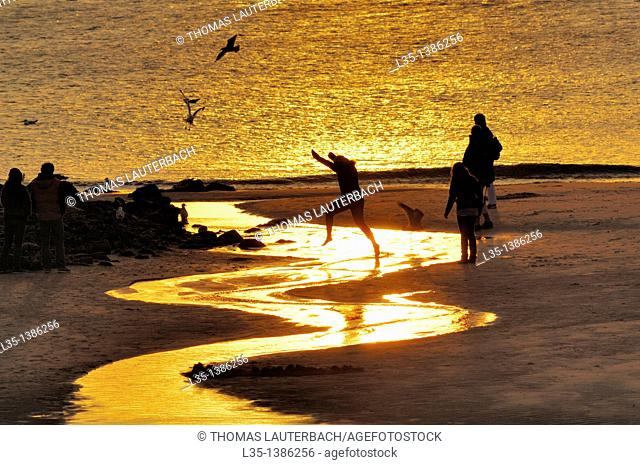 At sunset, a child jumps over a shining rivulet, the North Sea in the background, Sylt, Germany